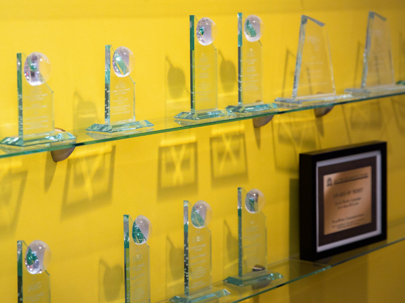 Shelves with awards
