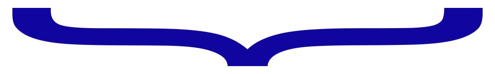 BlueBracket_CG